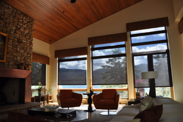 Living Room Solar and Fire Place- Durango Co